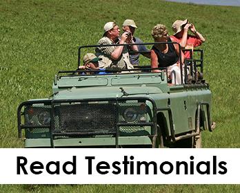 safari testimonials