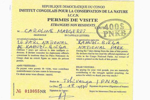 Gorilla Trekking Permit in Congo