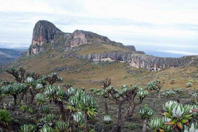 3 Days Mount Elgon Hike