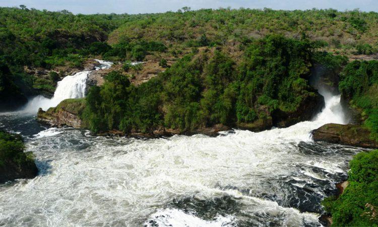 10 Days Uganda Wildlife & Gorilla Trekking safaris