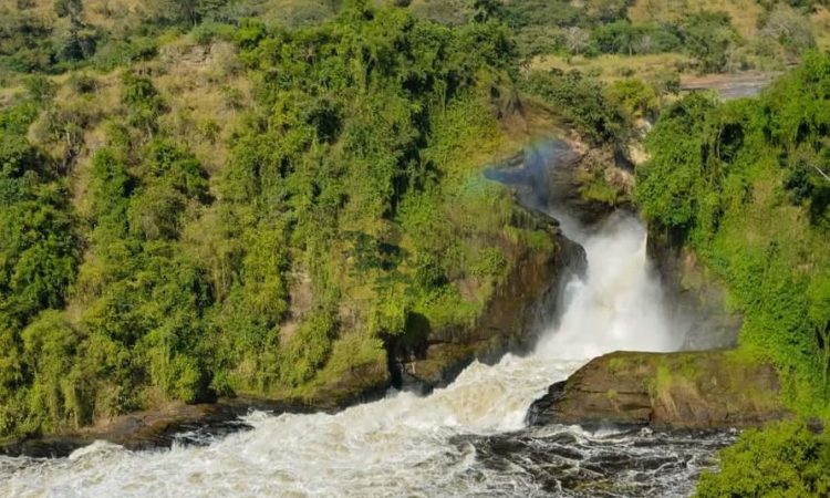 5 Days Murchison Falls & Semuliki Safari