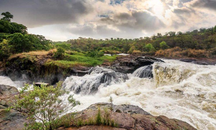 5 Days Murchison falls & Source of the Nile Safari