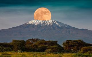10 days Kilimanjaro and Bwindi National Park safari