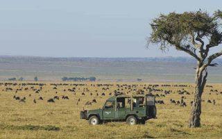 6 days Maasai Mara and Volcanoes National Park Safari